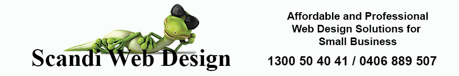 Web Design Carrum Downs Scandi Web Design
